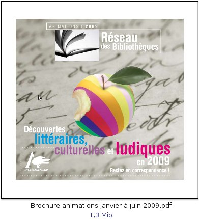 BrochureReseauBib2009-1