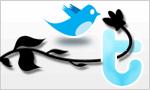 Twitter-23