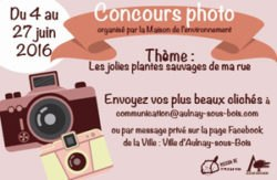 RTEmagicC_concours-photo-central.jpg