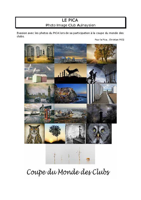 thumbnail of LE PICA envoi du 24 MAI